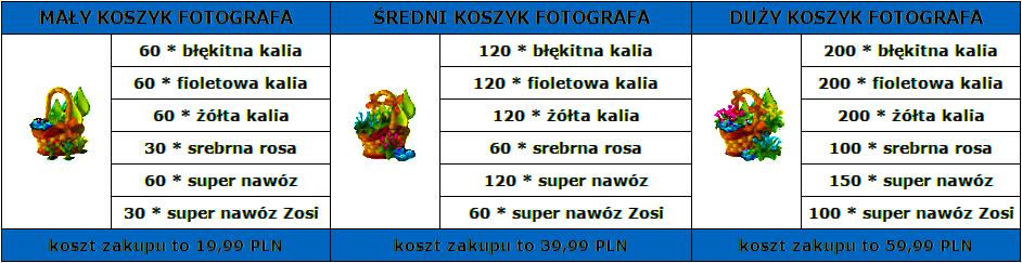 koszykiwtabeli-zamiana.png
