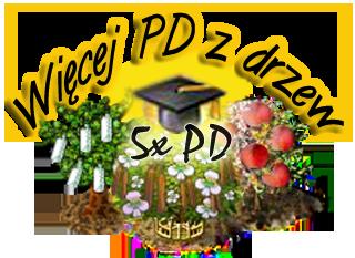5xPD_z_drzew.png