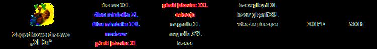 xihu_specyfikacja.png