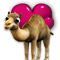 category_camel.png