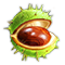 compoundnov2018chestnut_icon_big.png