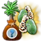 secretseedling7071dec2018_baha_pawpaw_plus_icon_big.png