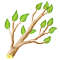countryjan2019branch_icon_big.png