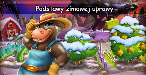 podstawy.png